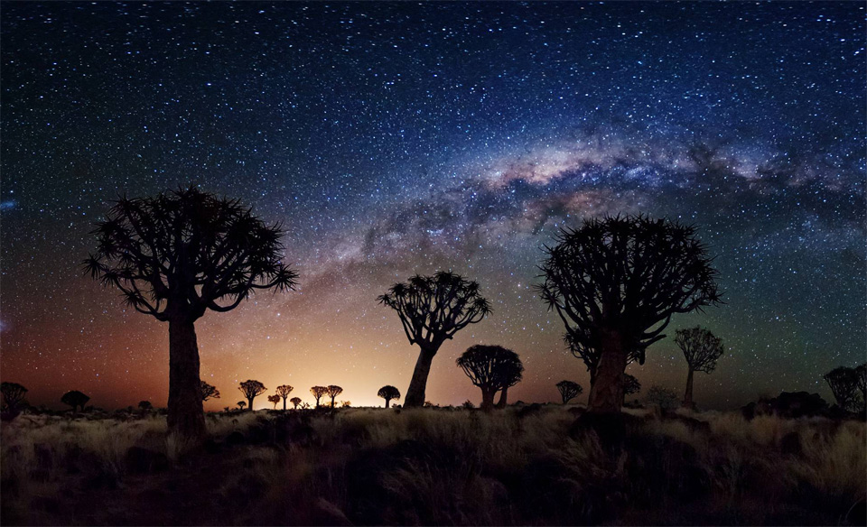 11milky-way-over-quiver-tree-forest