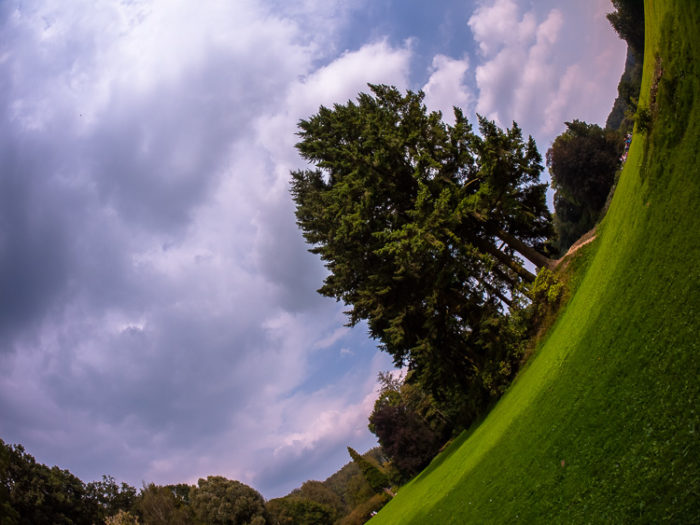 Fisheye Lens Photography: distorted view of park and sky