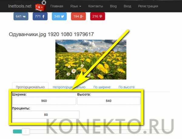 Как изменить размер изображения в Photoshop CC для web | 459x600